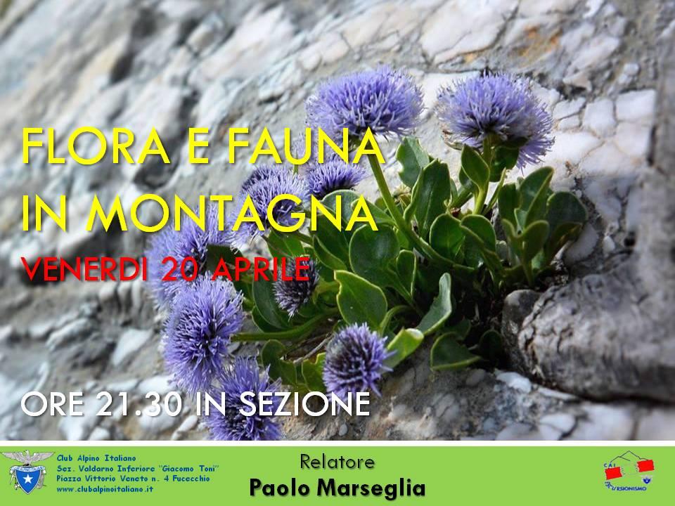 flora e fauna 2