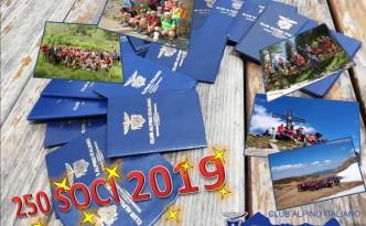250 SOCI 2019