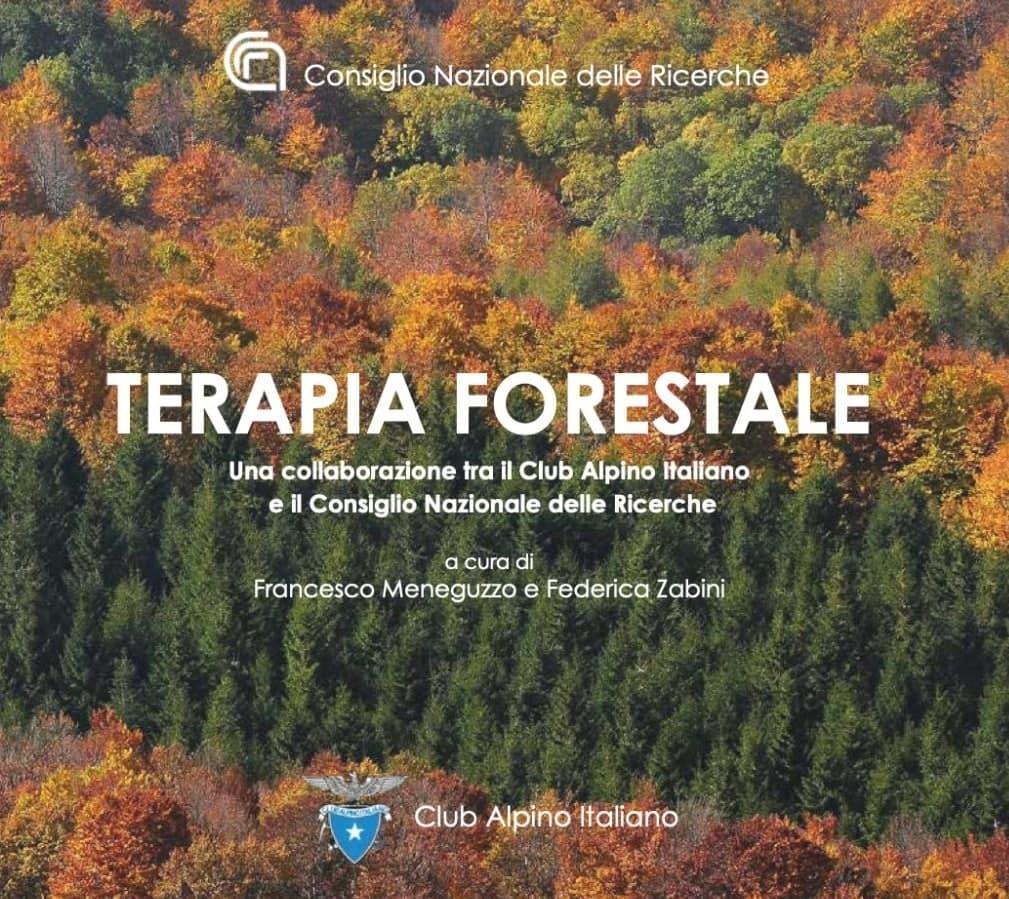 Google Meet Terapia Forestale